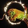 Цирки в Кунашаке